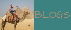 Stephanie Dale blogs