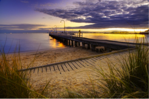 Melbourne Steven Wright