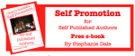 Self Promotion for Self Published Authors